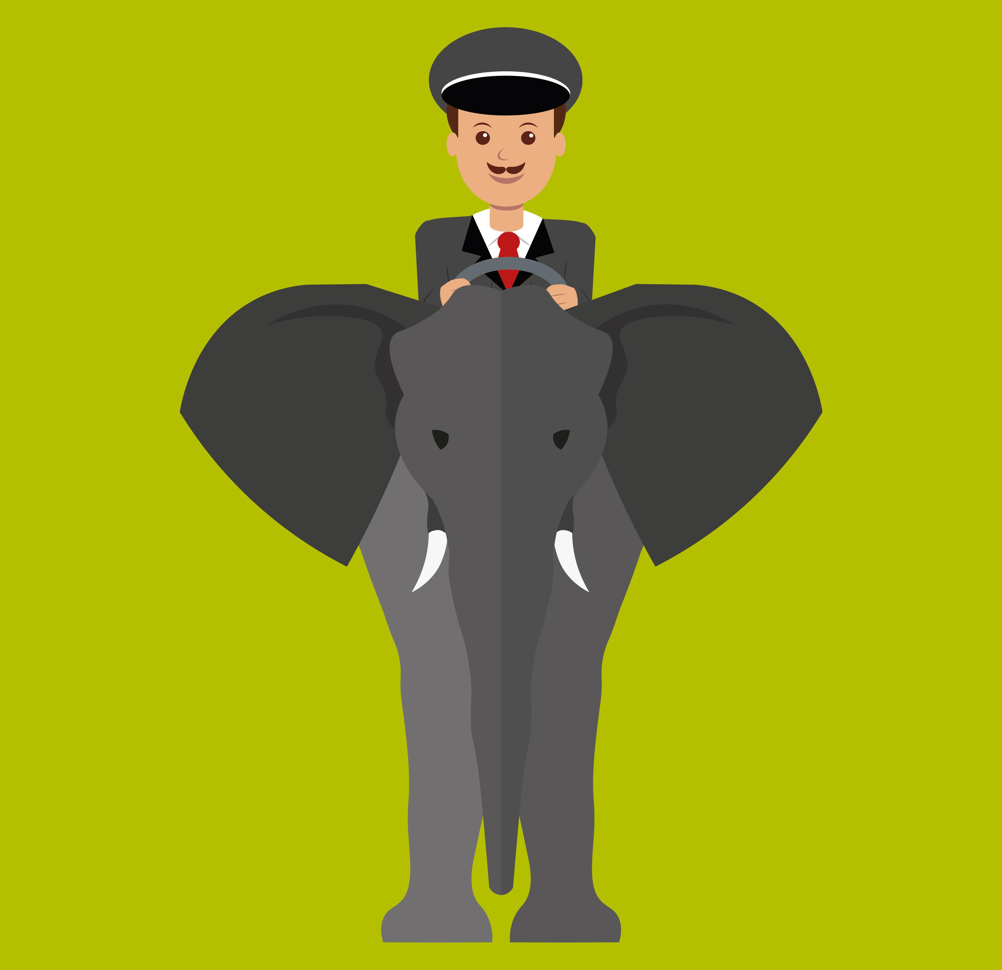 metafora elefante y conductor