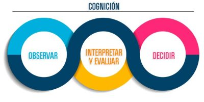 img1-diferencias-cognition
